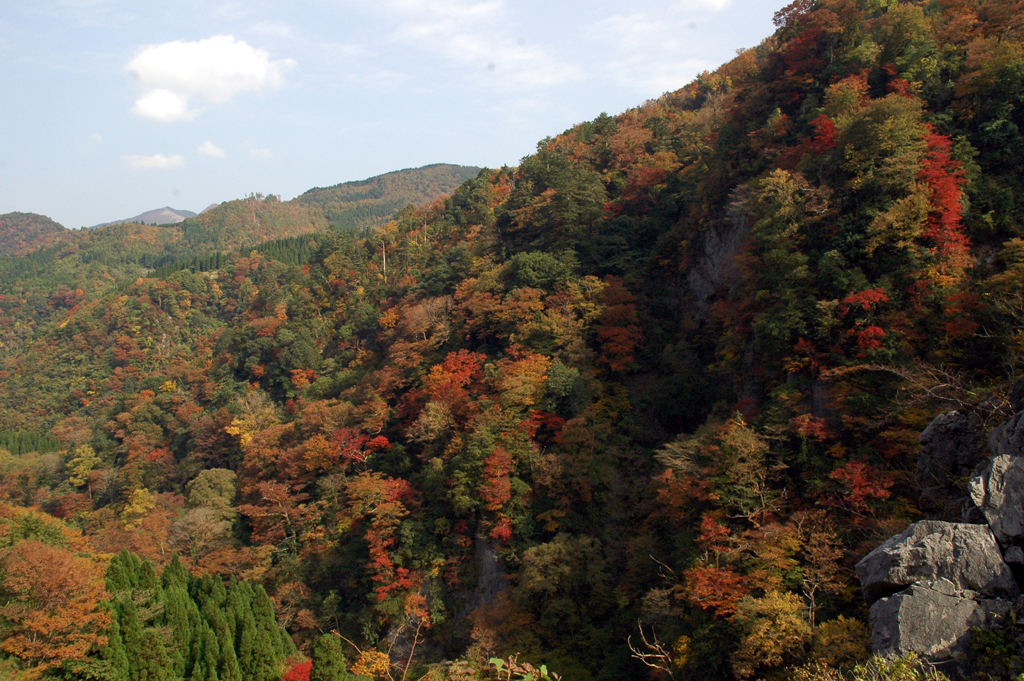 山都町緑仙渓紅葉